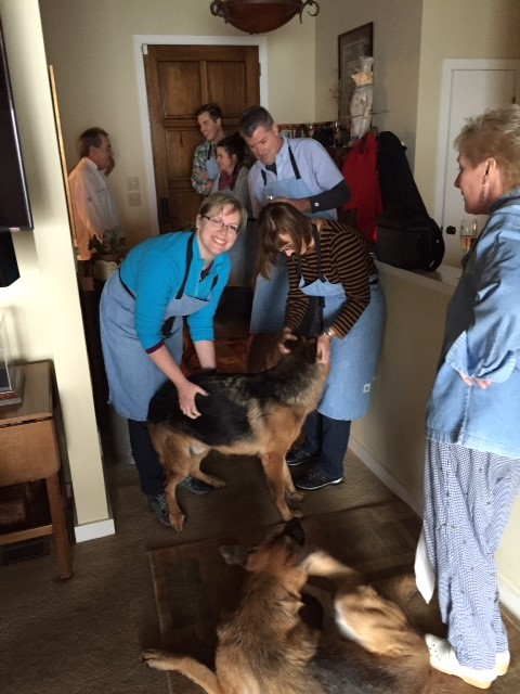 paws-at-home-vet-vacation2